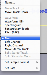 In Audacity kann man eine Spur ganz einfach auf Mono stellen